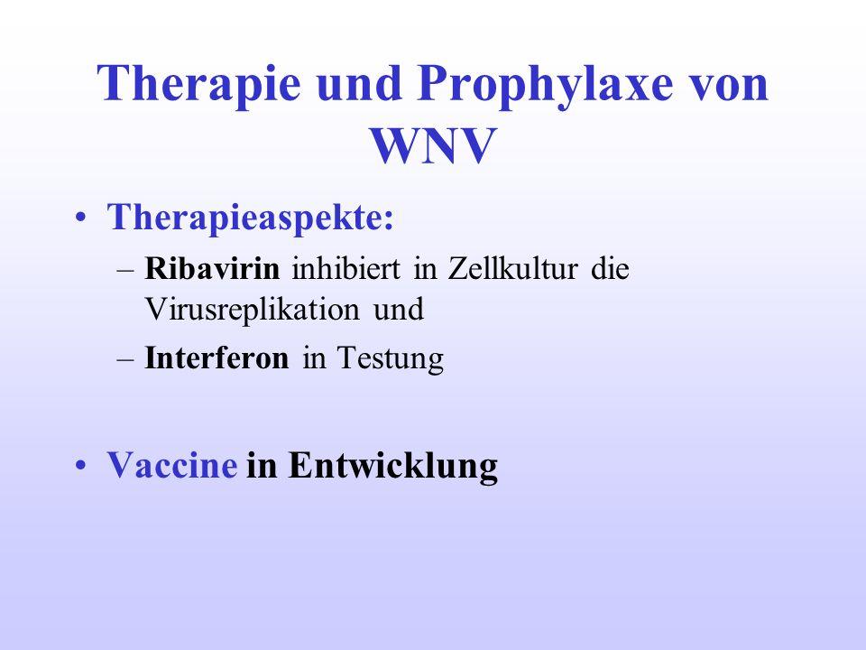 Therapie und Prophylaxe von WNV