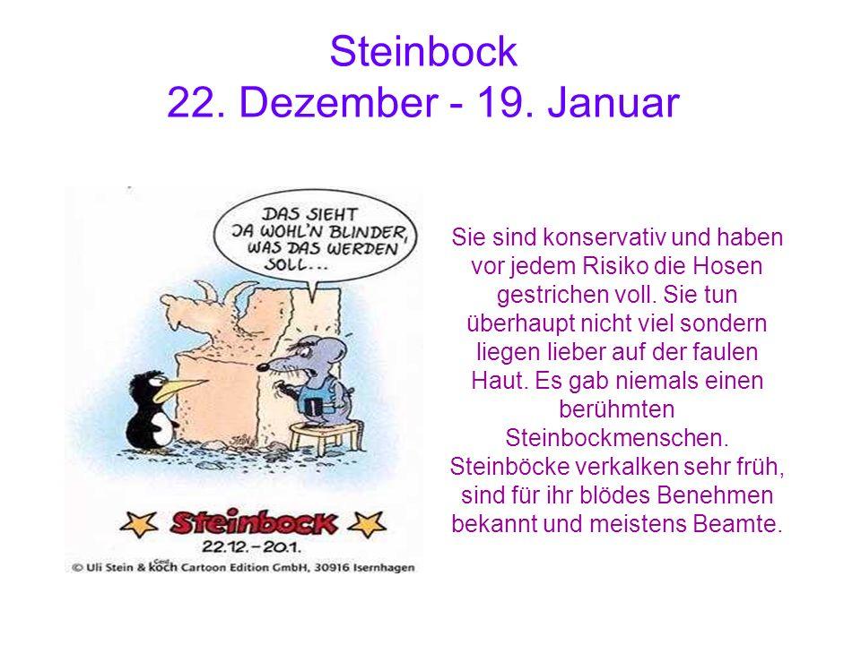 Steinbock 22. Dezember - 19. Januar