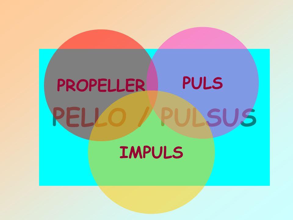 PULS PROPELLER PELLO / PULSUS IMPULS