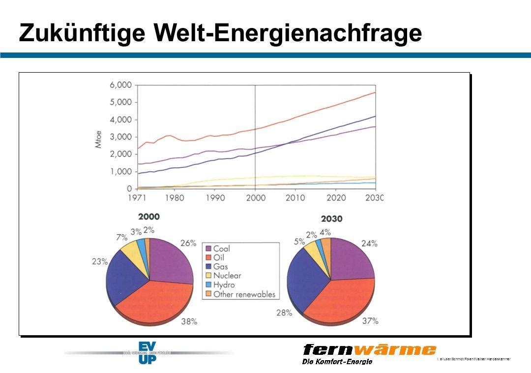 Zukünftige Welt-Energienachfrage