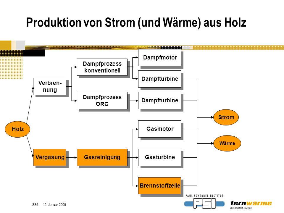 Produktion von Strom (und Wärme) aus Holz