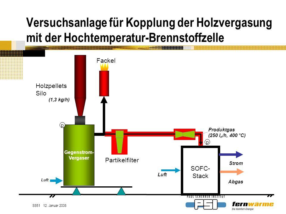 Versuchsanlage für Kopplung der Holzvergasung mit der Hochtemperatur-Brennstoffzelle