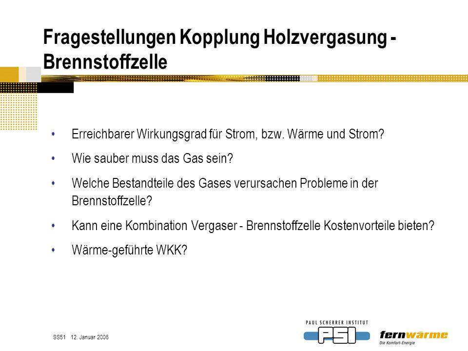 Fragestellungen Kopplung Holzvergasung - Brennstoffzelle