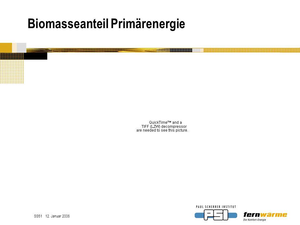 Biomasseanteil Primärenergie