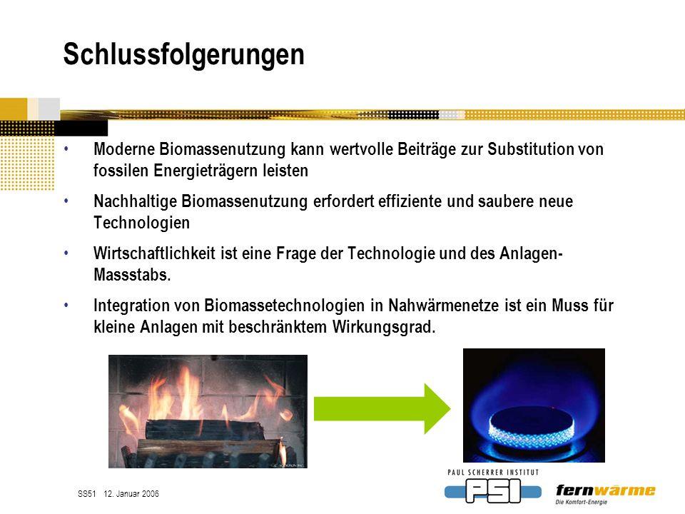 Schlussfolgerungen Moderne Biomassenutzung kann wertvolle Beiträge zur Substitution von fossilen Energieträgern leisten.