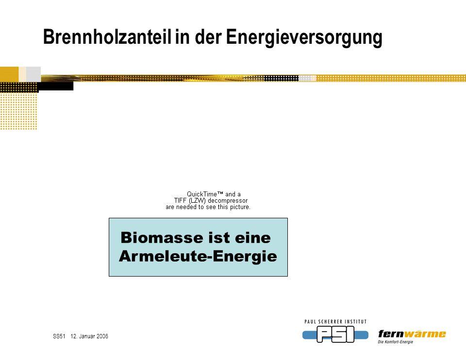 Brennholzanteil in der Energieversorgung