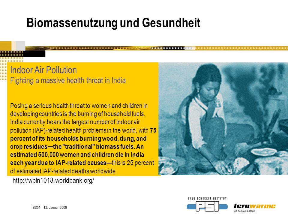 Biomassenutzung und Gesundheit