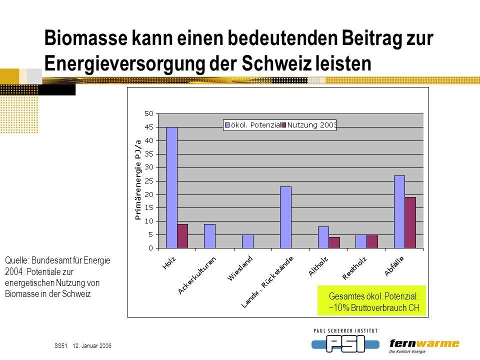 Biomasse kann einen bedeutenden Beitrag zur Energieversorgung der Schweiz leisten