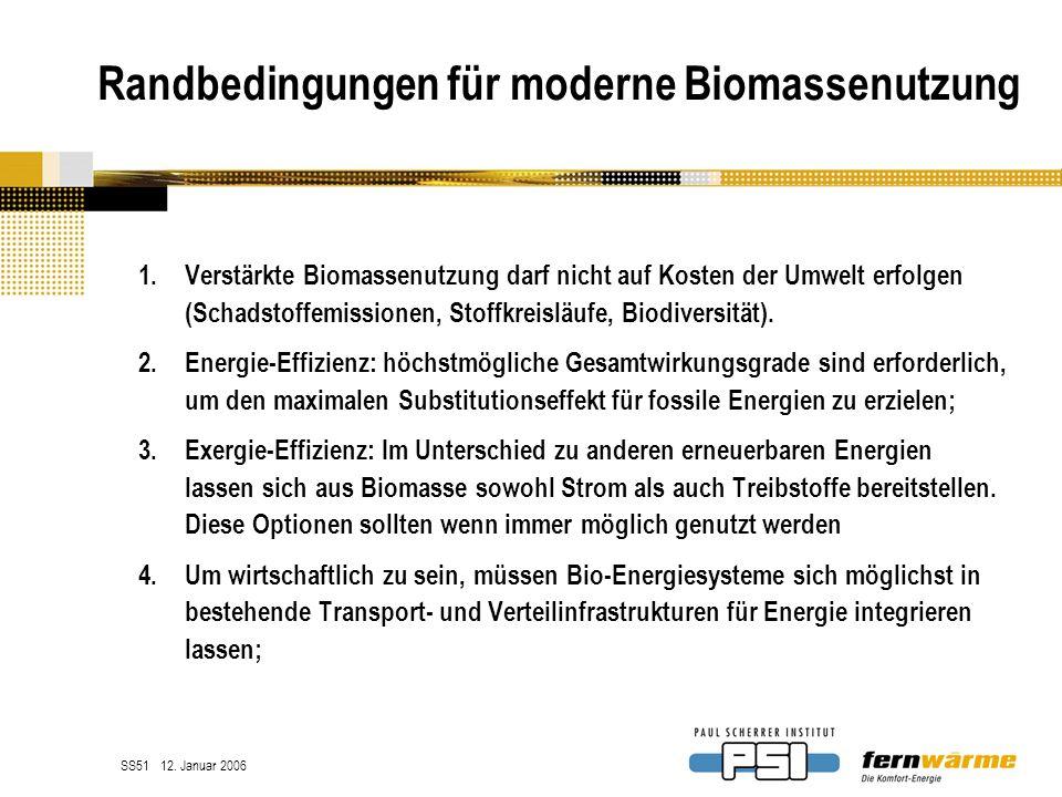 Randbedingungen für moderne Biomassenutzung