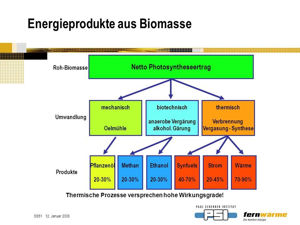 Energieprodukte aus Biomasse