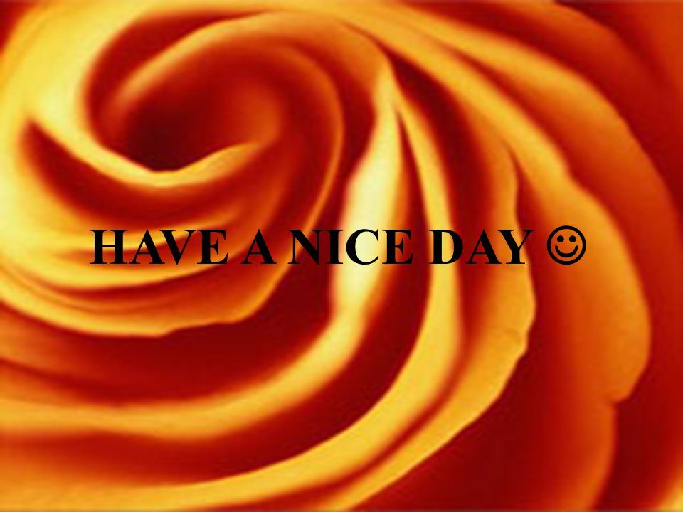 HAVE A NICE DAY 
