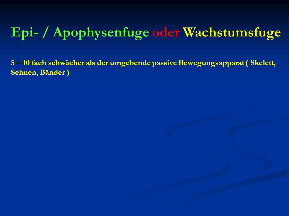 Epi- / Apophysenfuge oder Wachstumsfuge