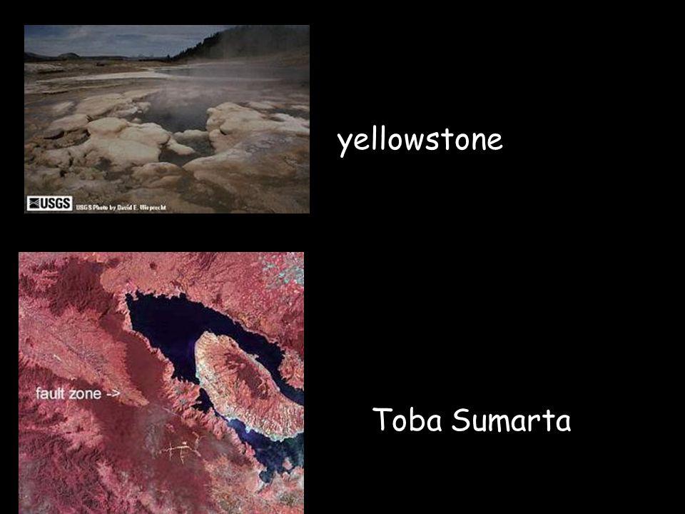 yellowstone Toba Sumarta