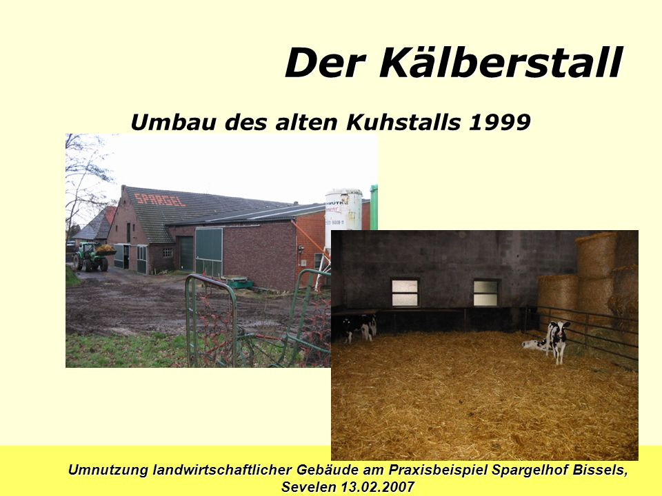 Umbau des alten Kuhstalls 1999