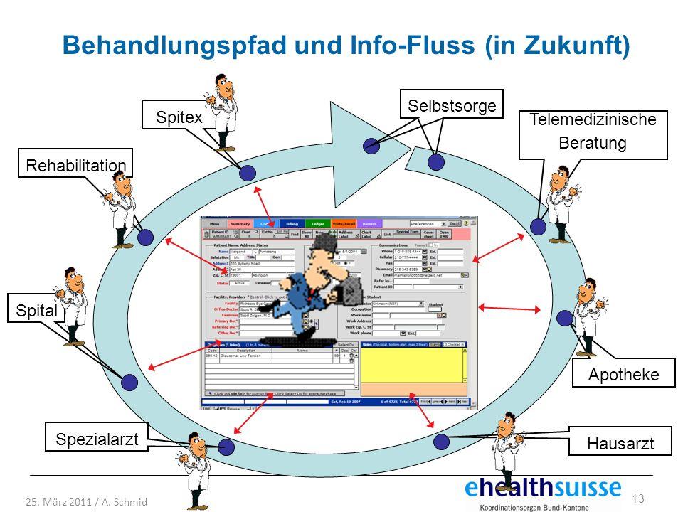Behandlungspfad und Info-Fluss (in Zukunft)