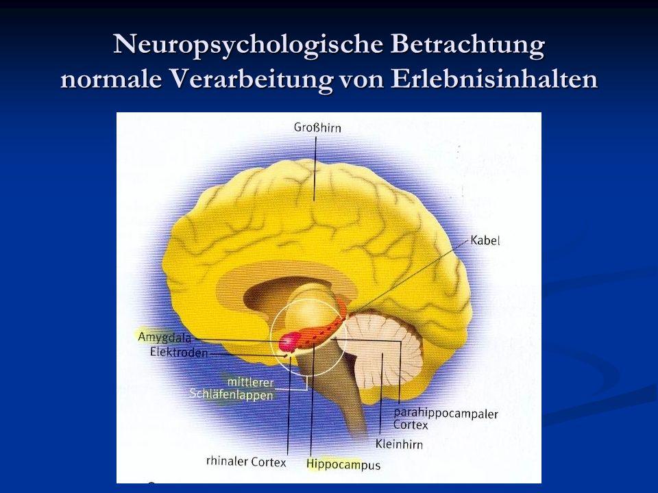 Neuropsychologische Betrachtung normale Verarbeitung von Erlebnisinhalten
