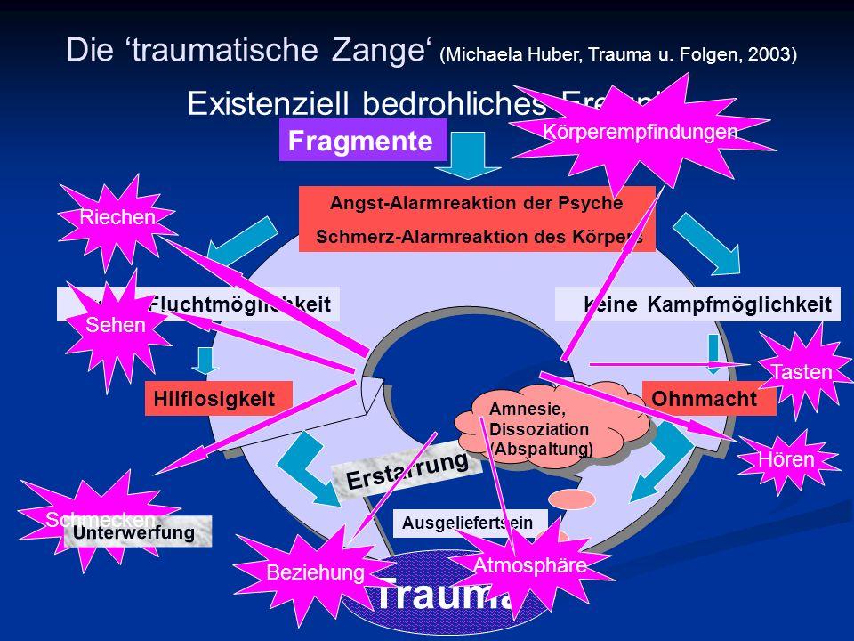 Angst-Alarmreaktion der Psyche Schmerz-Alarmreaktion des Körpers