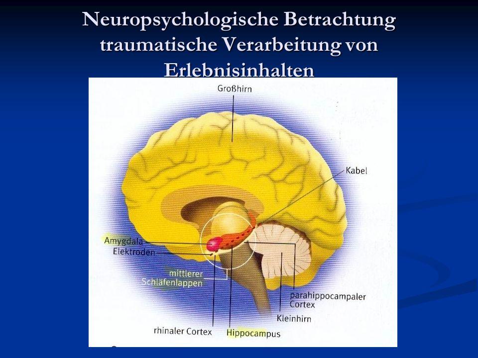Neuropsychologische Betrachtung traumatische Verarbeitung von Erlebnisinhalten