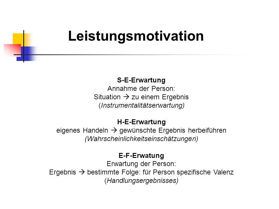 Leistungsmotivation S-E-Erwartung Annahme der Person: