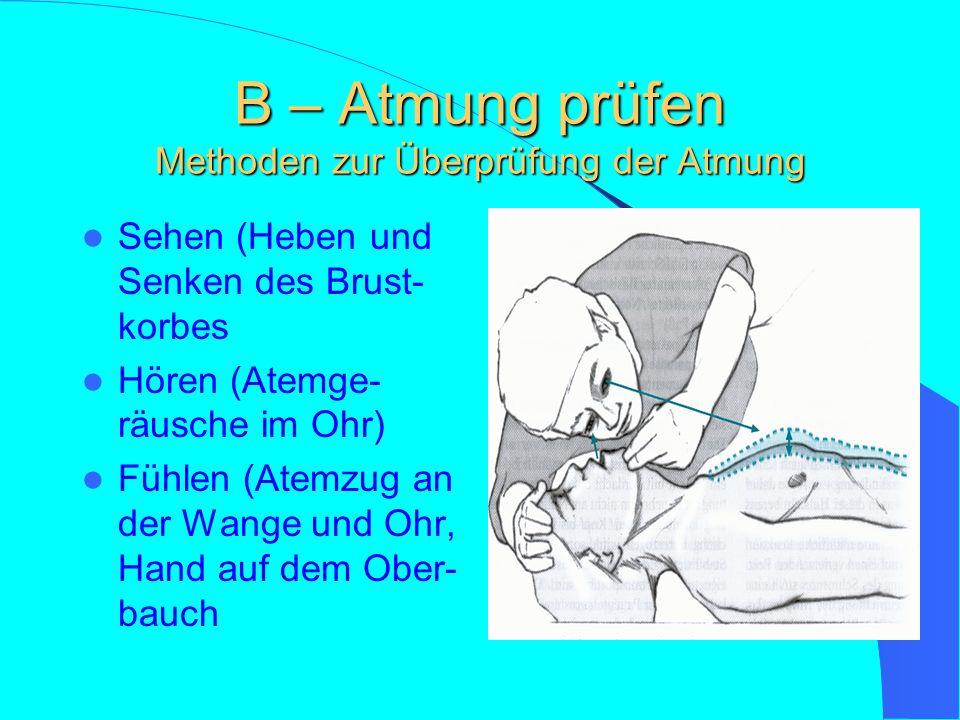 B – Atmung prüfen Methoden zur Überprüfung der Atmung