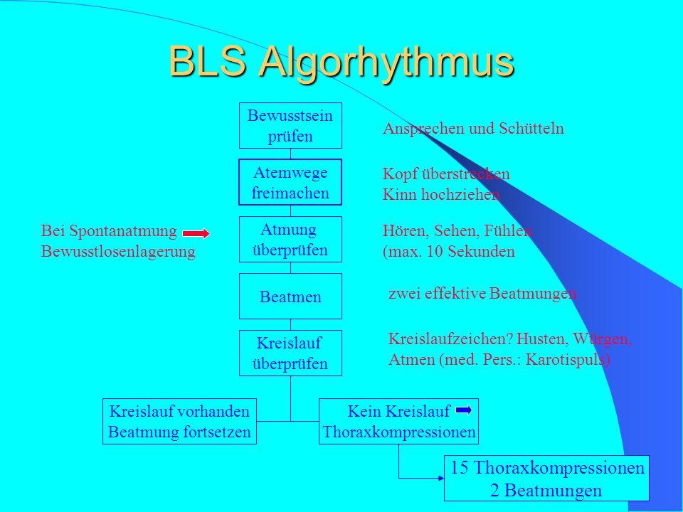 BLS Algorhythmus 15 Thoraxkompressionen 2 Beatmungen Bewusstsein