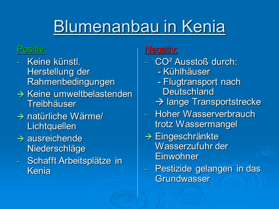 Blumenanbau in Kenia Positiv: