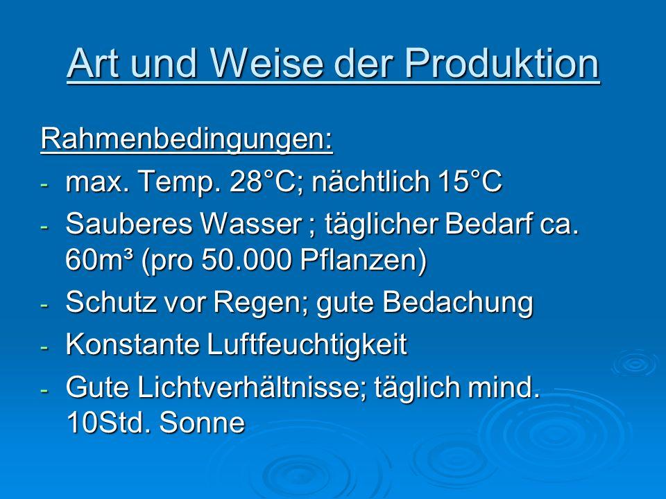 Art und Weise der Produktion