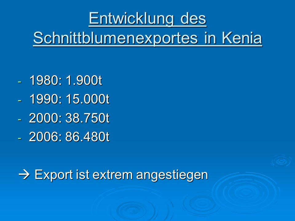 Entwicklung des Schnittblumenexportes in Kenia