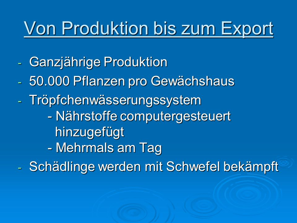 Von Produktion bis zum Export