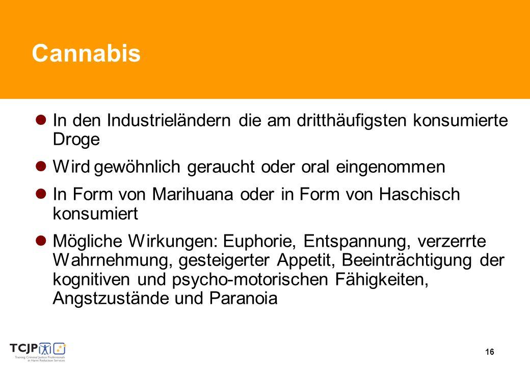 Cannabis In den Industrieländern die am dritthäufigsten konsumierte Droge. Wird gewöhnlich geraucht oder oral eingenommen.