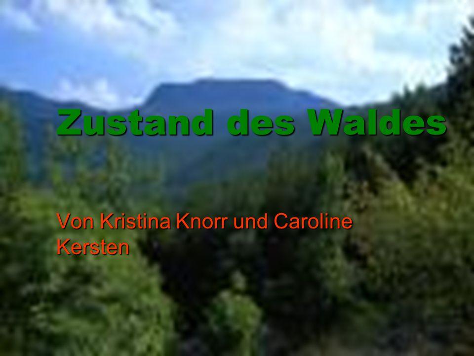 Von Kristina Knorr und Caroline Kersten