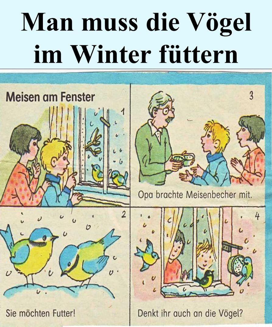 Man muss die Vögel im Winter füttern