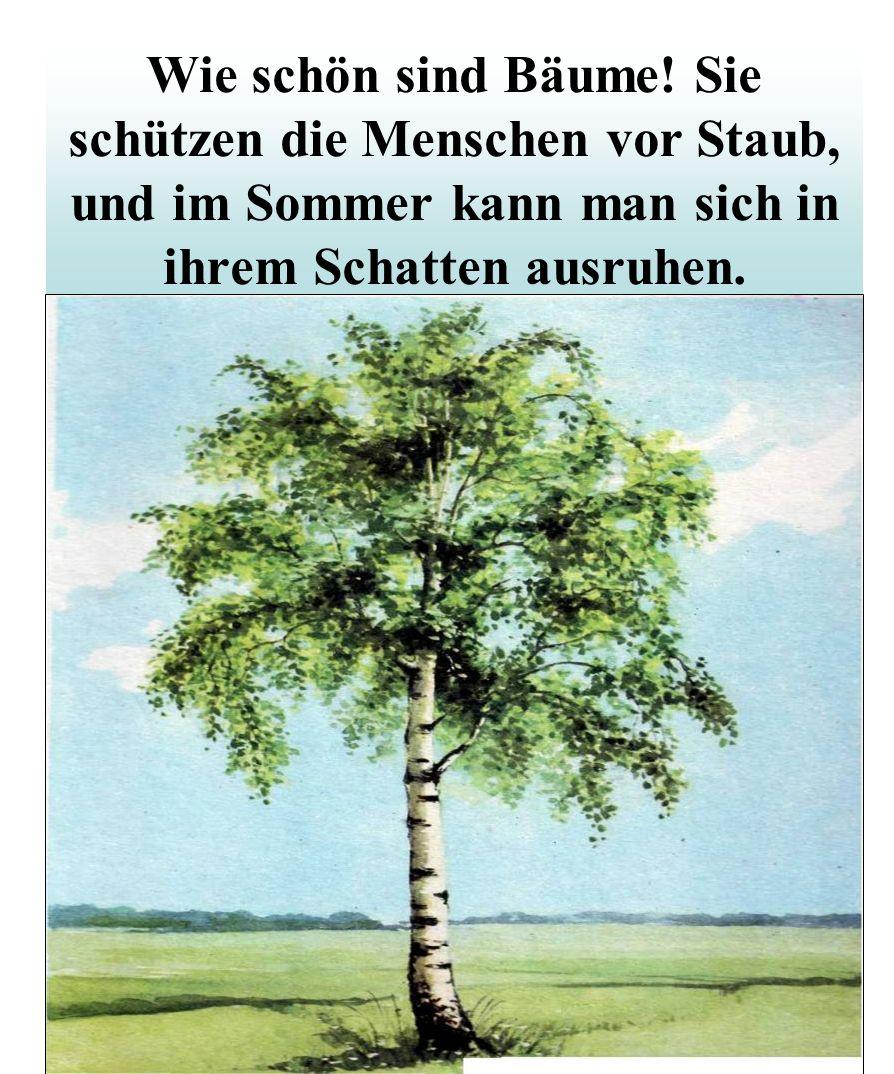 Wie schön sind Bäume.