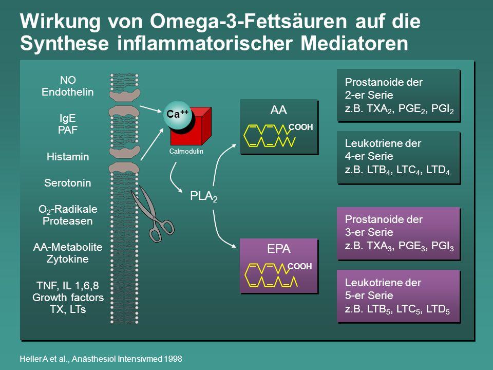Wirkung von Omega-3-Fettsäuren auf die Synthese inflammatorischer Mediatoren