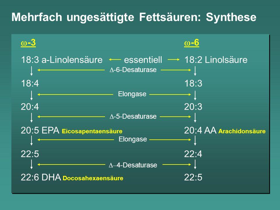 Mehrfach ungesättigte Fettsäuren: Synthese
