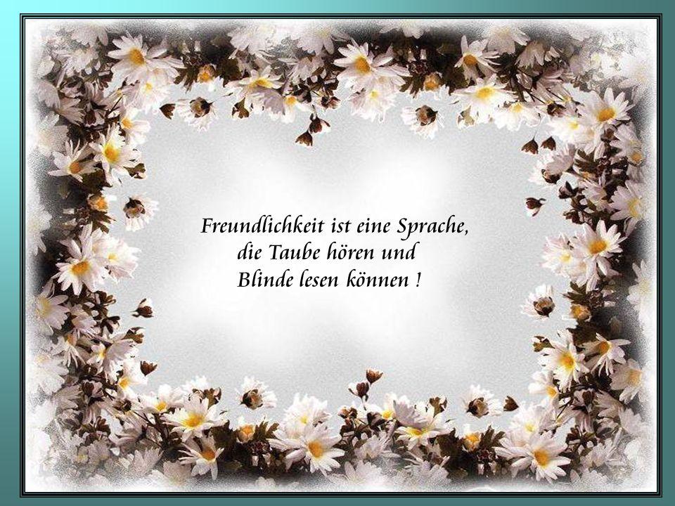 Freundlichkeit ist eine Sprache,
