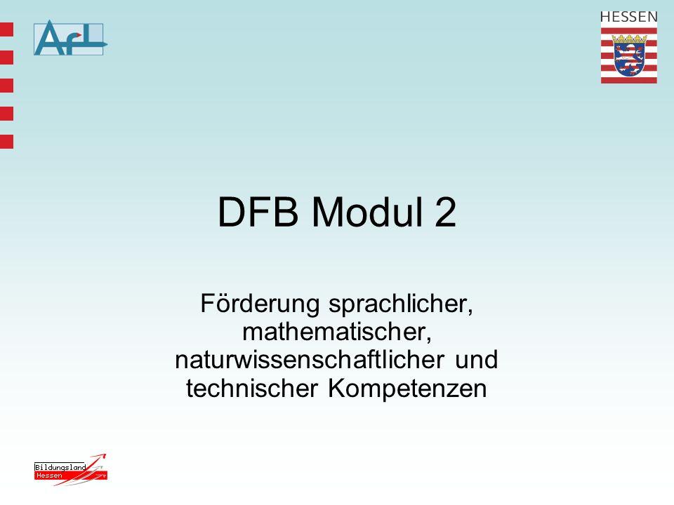 DFB Modul 2 Förderung sprachlicher, mathematischer, naturwissenschaftlicher und technischer Kompetenzen.