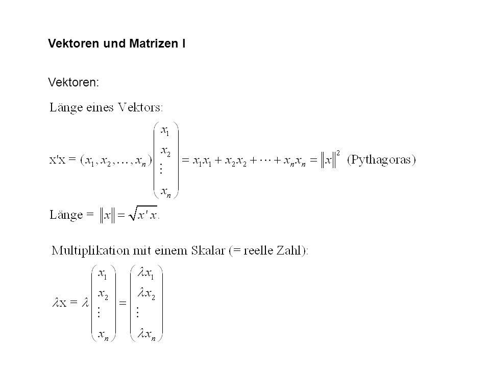 Vektoren und Matrizen I