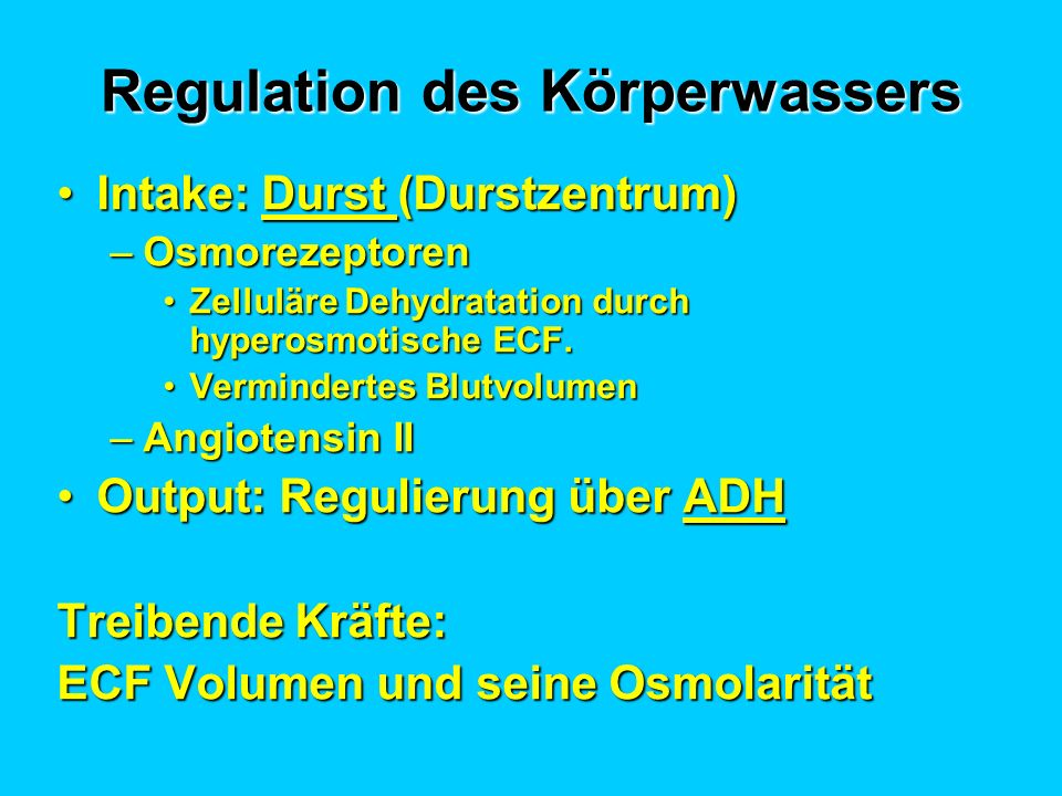 Regulation des Körperwassers