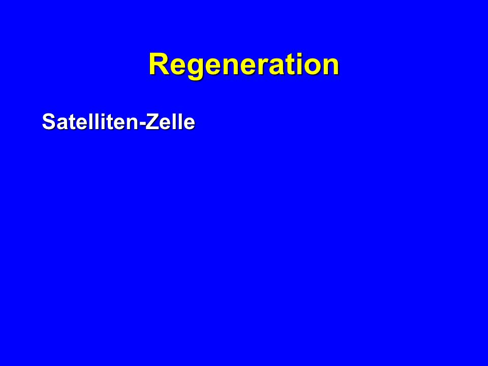 Regeneration Satelliten-Zelle