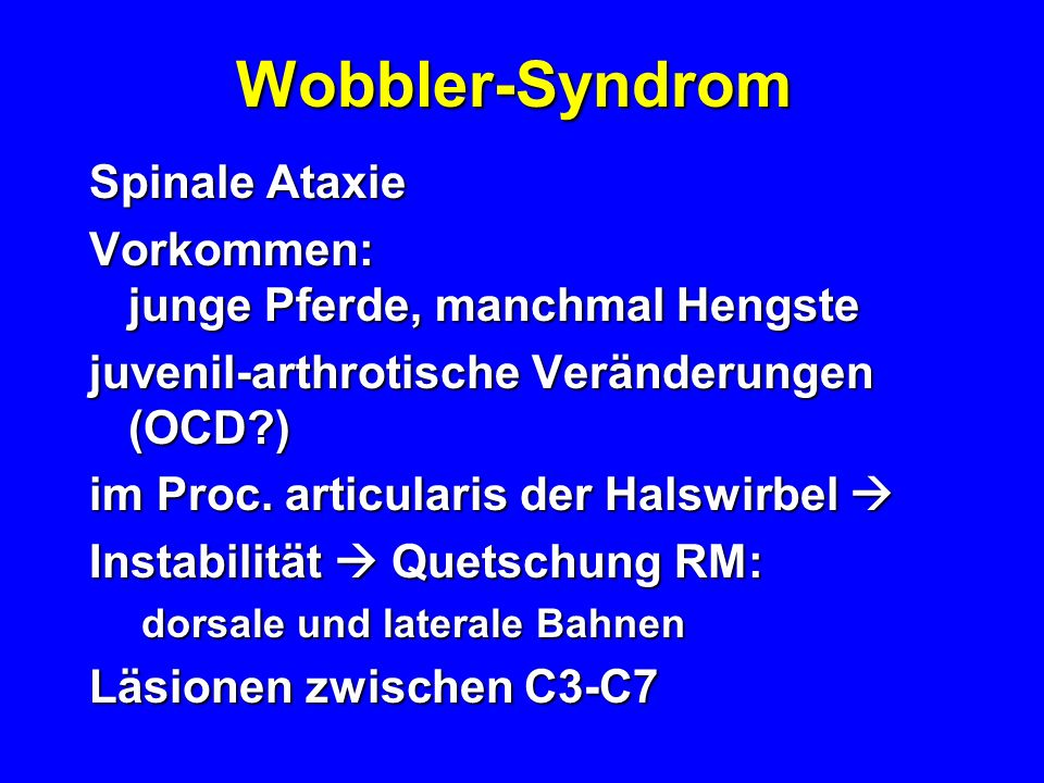 Wobbler-Syndrom Spinale Ataxie