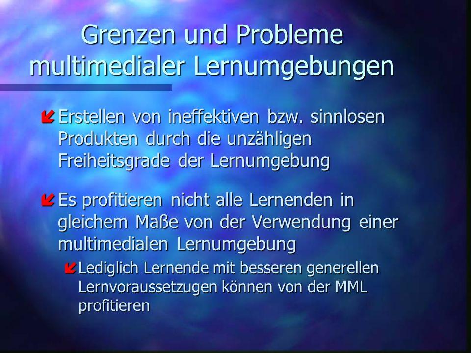 Grenzen und Probleme multimedialer Lernumgebungen