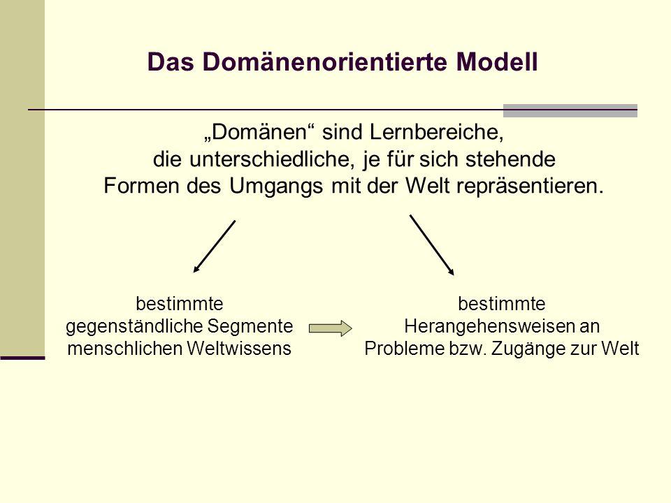 Das Domänenorientierte Modell
