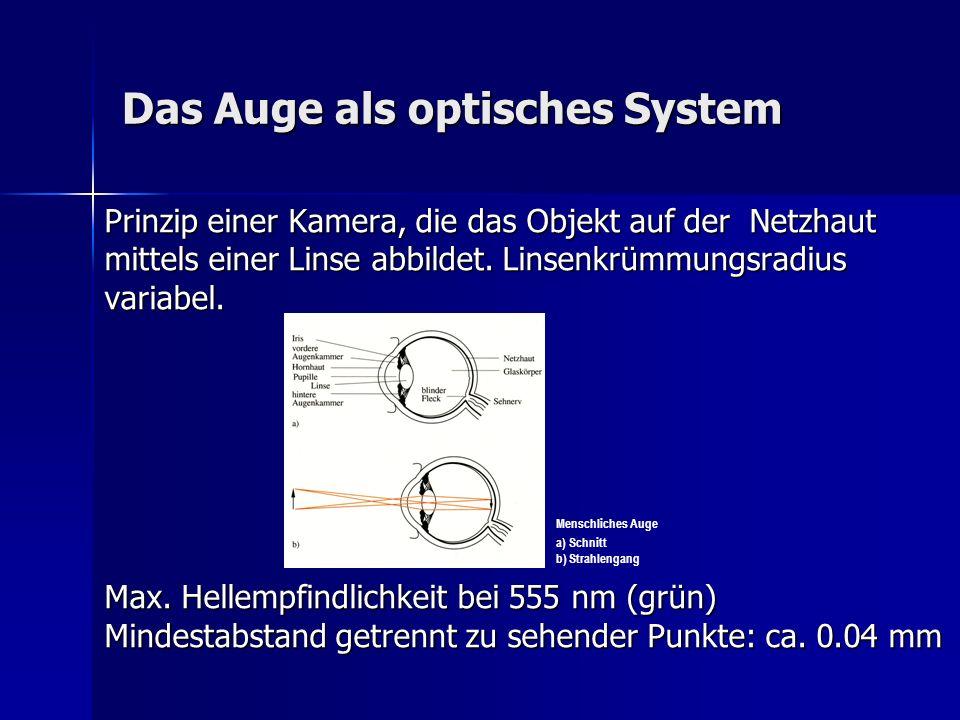 Das Auge als optisches System