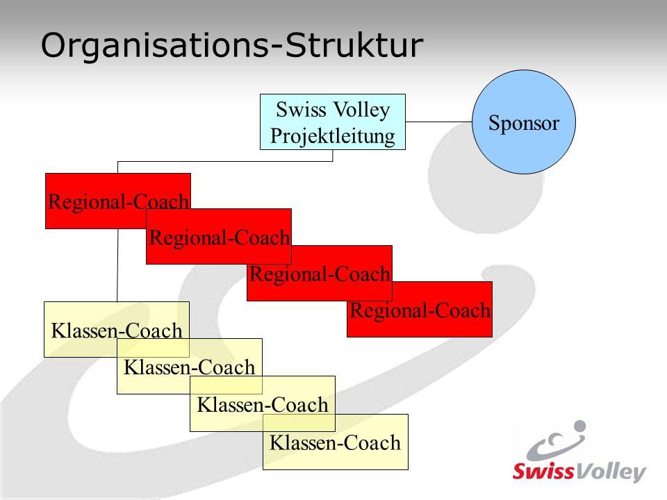 Organisations-Struktur