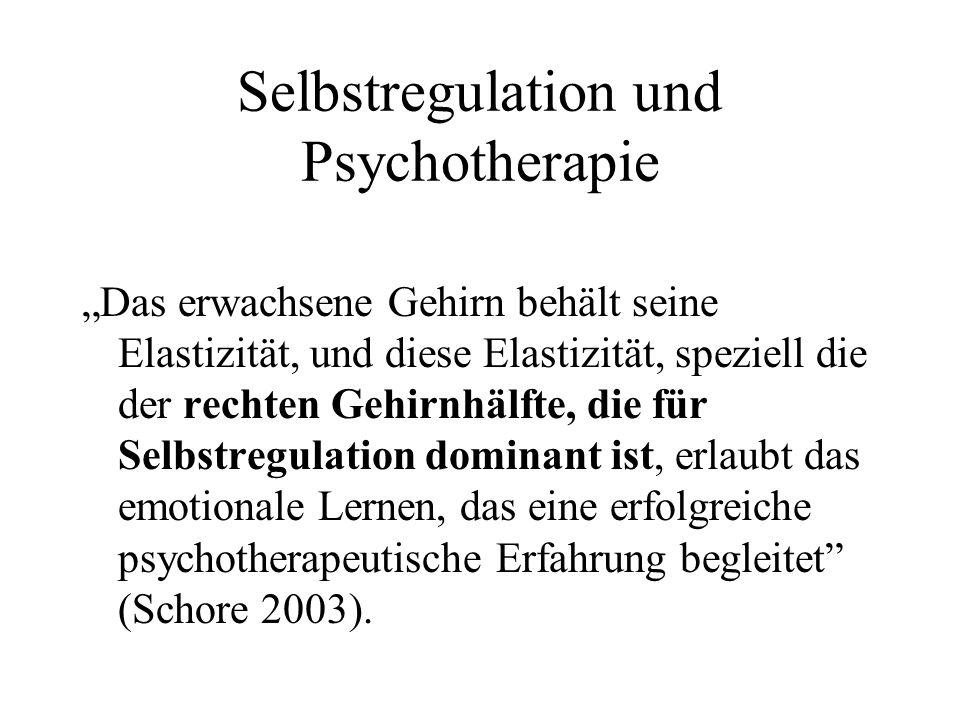 Selbstregulation und Psychotherapie