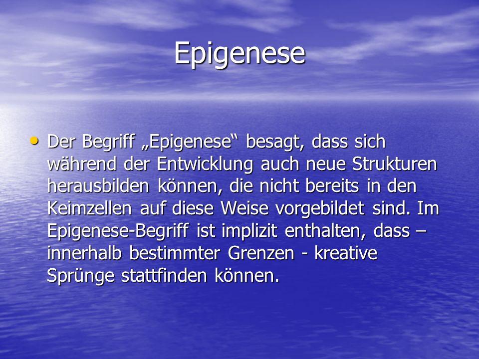 Epigenese