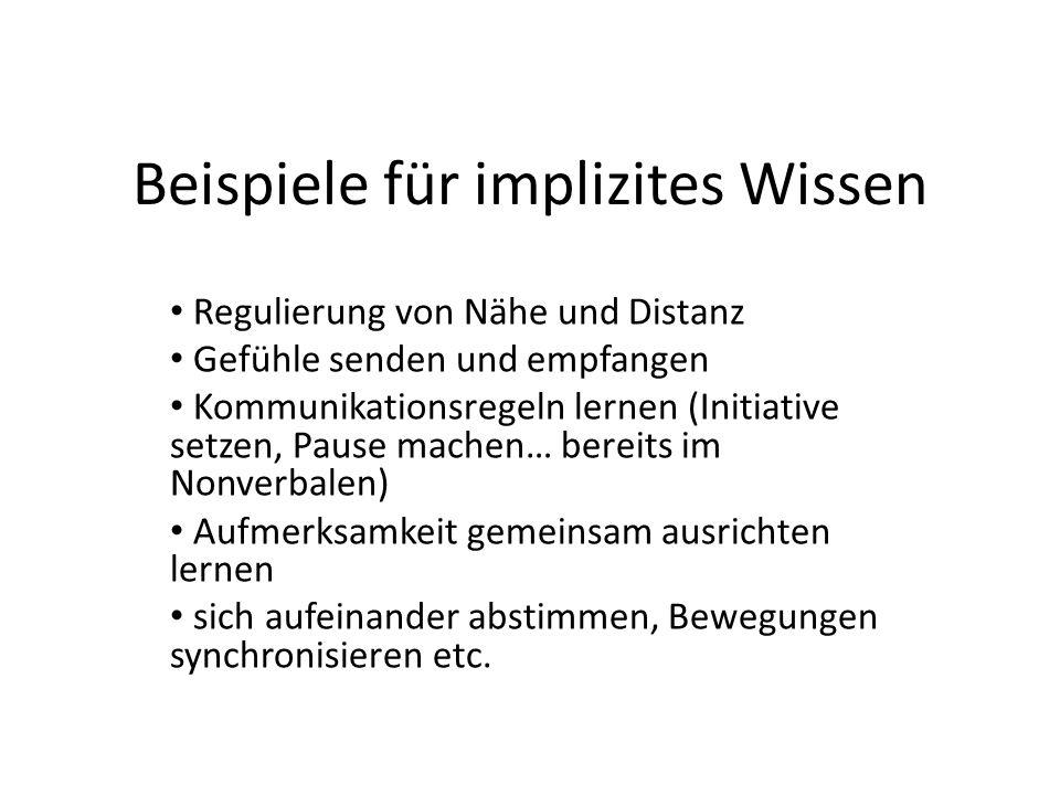 Beispiele für implizites Wissen