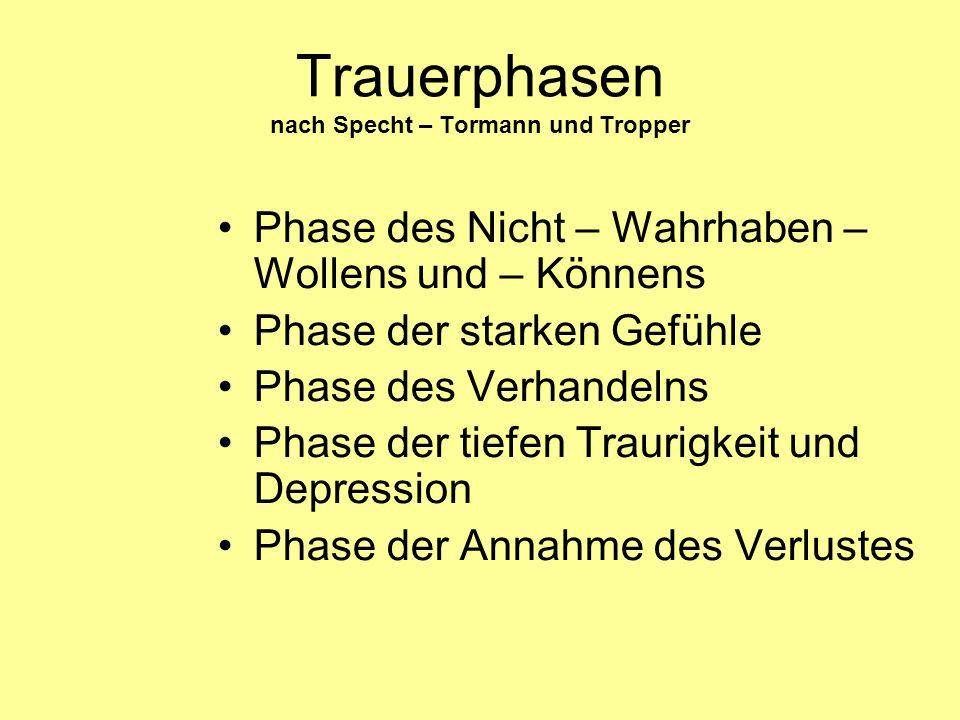Trauerphasen nach Specht – Tormann und Tropper