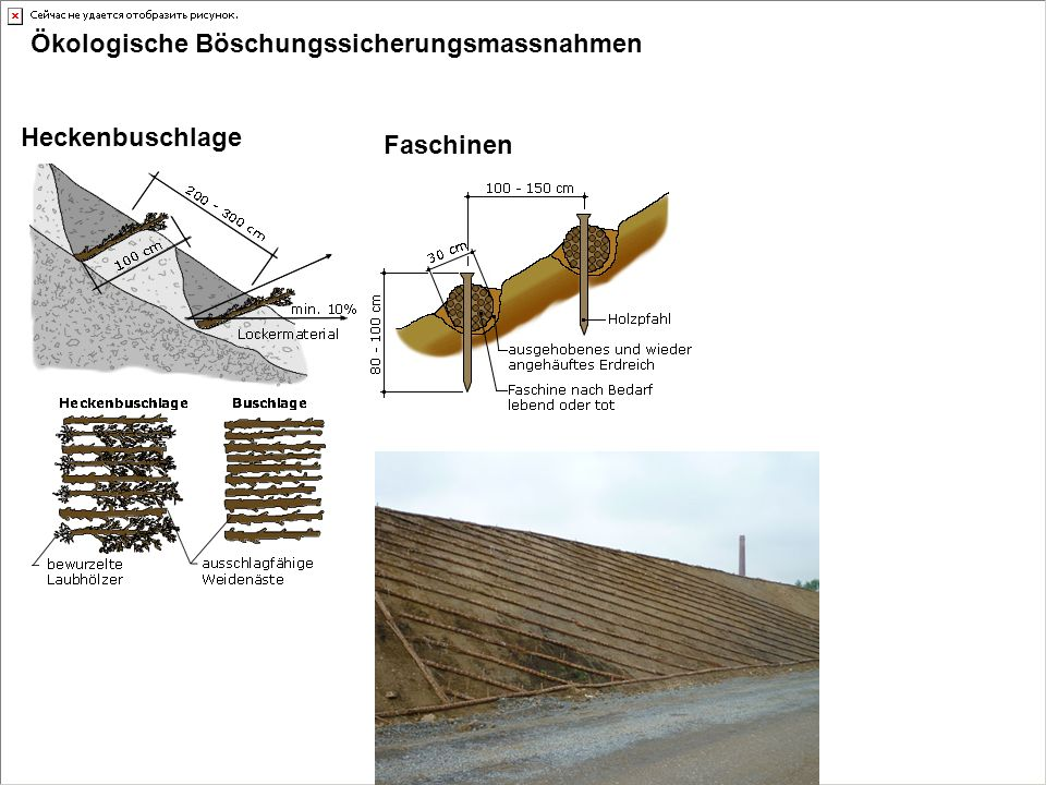 Ökologische Böschungssicherungsmassnahmen